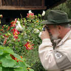 Man Photographing Flowers, Germany